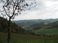 Emilia Romagna villas and vacation rentals