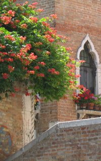 venice accommodations and vacation apartments